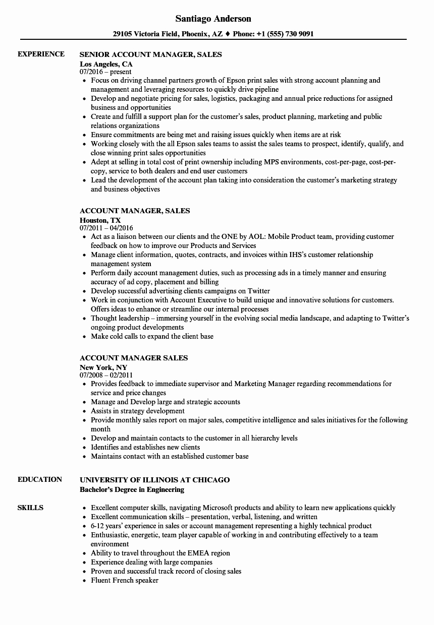 Key Account Manager Resume Unique Account Manager Sales Resume Samples