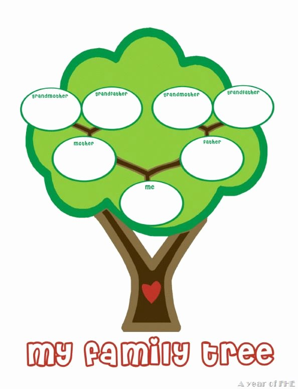 Kindergarten Family Tree Template Awesome Preschool Family Tree Template