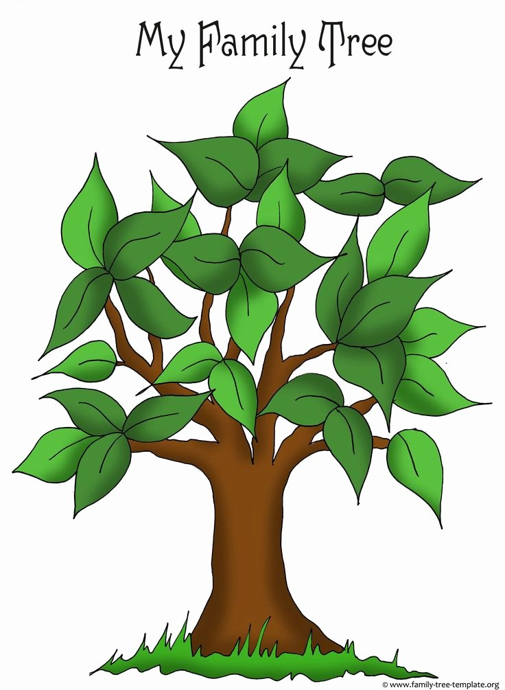 Kindergarten Family Tree Template Best Of Artistic Apple Tree Template for Free Placement Of Family