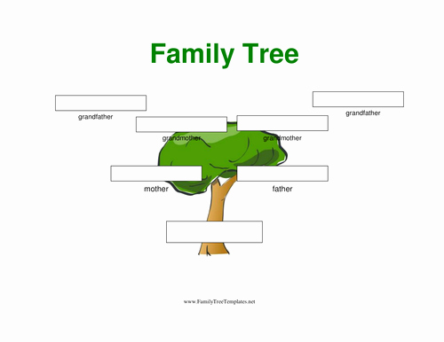 Kindergarten Family Tree Template Fresh Family Tree for Homework or Lesson or Childcare by