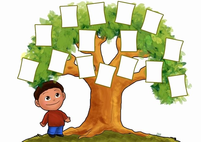Kindergarten Family Tree Template New Family Tree Template 3 Generations