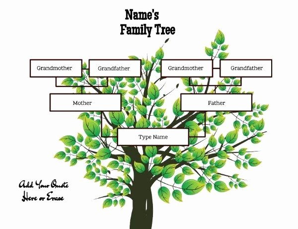 Kindergarten Family Tree Template Unique Family Tree Maker Templates