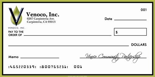 Large Blank Check Template Beautiful Check Gallery