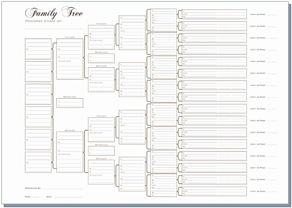 Large Family Tree Template Awesome A3 Six Generation Family Tree Chart Pedigree Pack Of 3