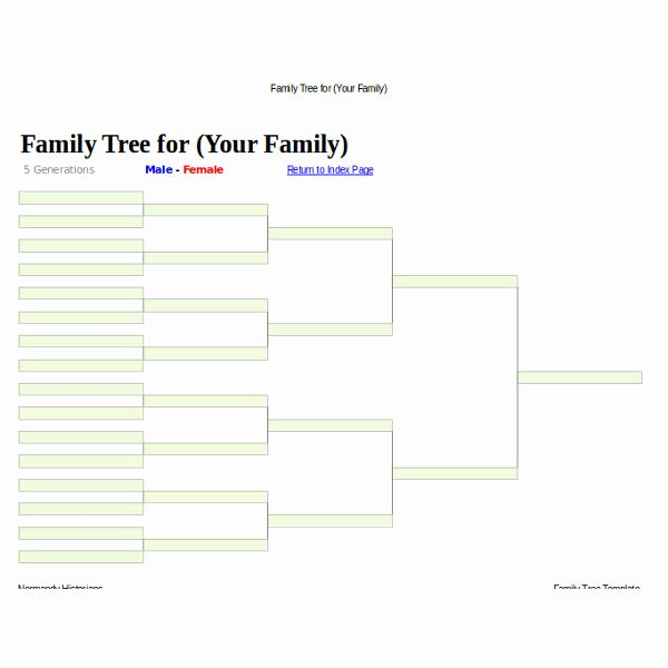 Large Family Tree Template Beautiful 5 Family Tree Templates Doc Pdf