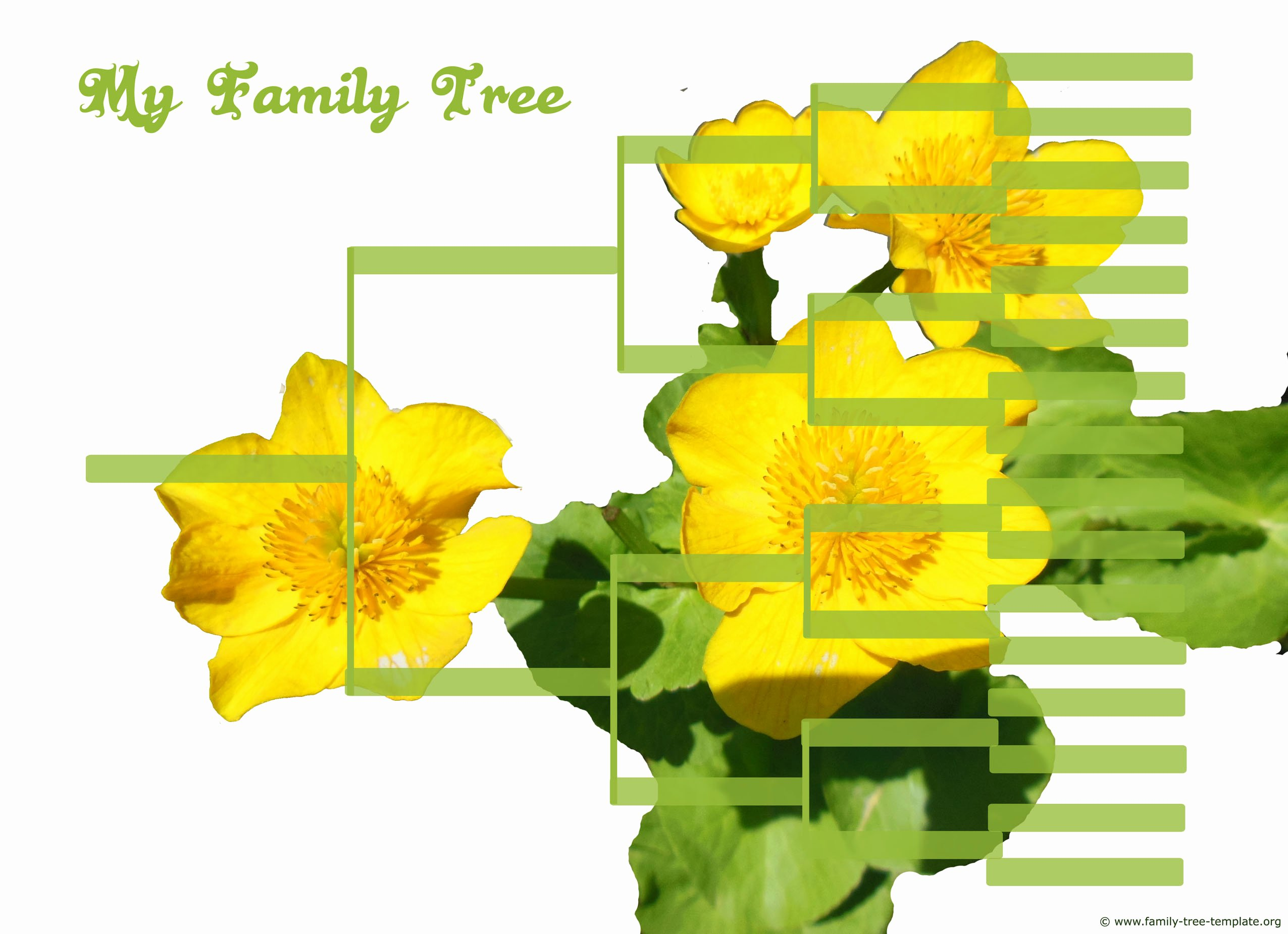 Large Family Tree Template Luxury Free Family Tree Templates Using Free Ancestry