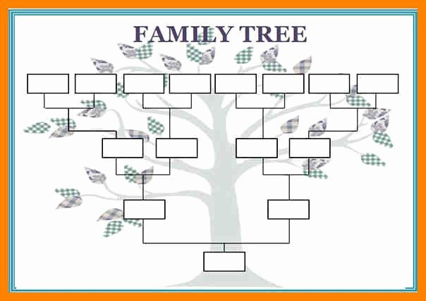 Large Family Tree Templates Elegant 12 Blank Family Tree Template