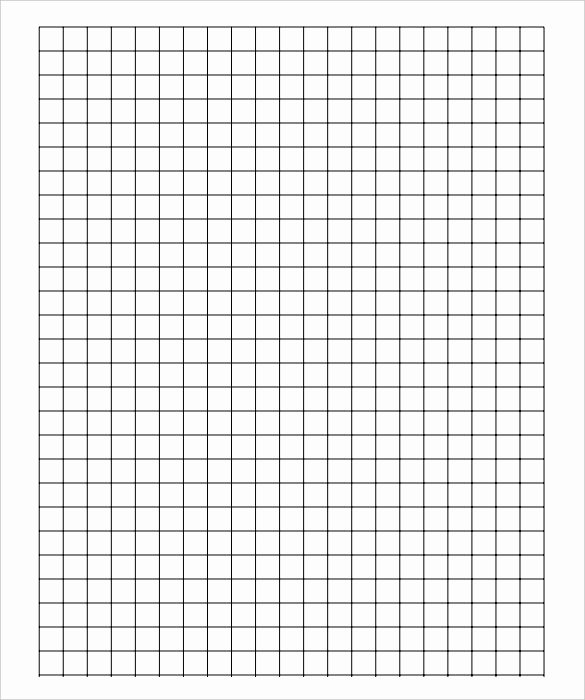 Large Print Graph Paper Beautiful 9 Graph Paper Templates Doc Pdf