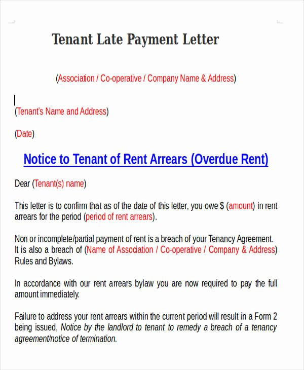 Late Payment Notice Template Luxury 11 Late Payment Letter Templates Word Google Docs