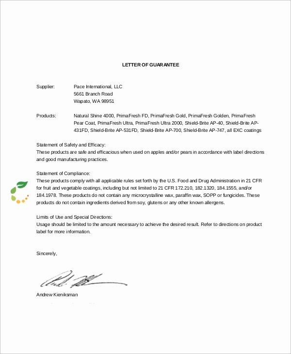 Letter Of Guarantee Sample New 54 Guarantee Letter Samples Pdf Doc