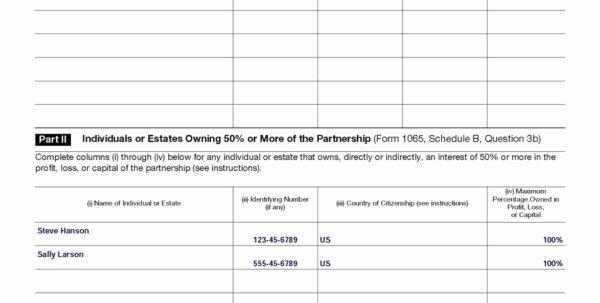 Llc Capital Account Spreadsheet Awesome Schedule Real Estate Owned Spreadsheet Spreadsheet