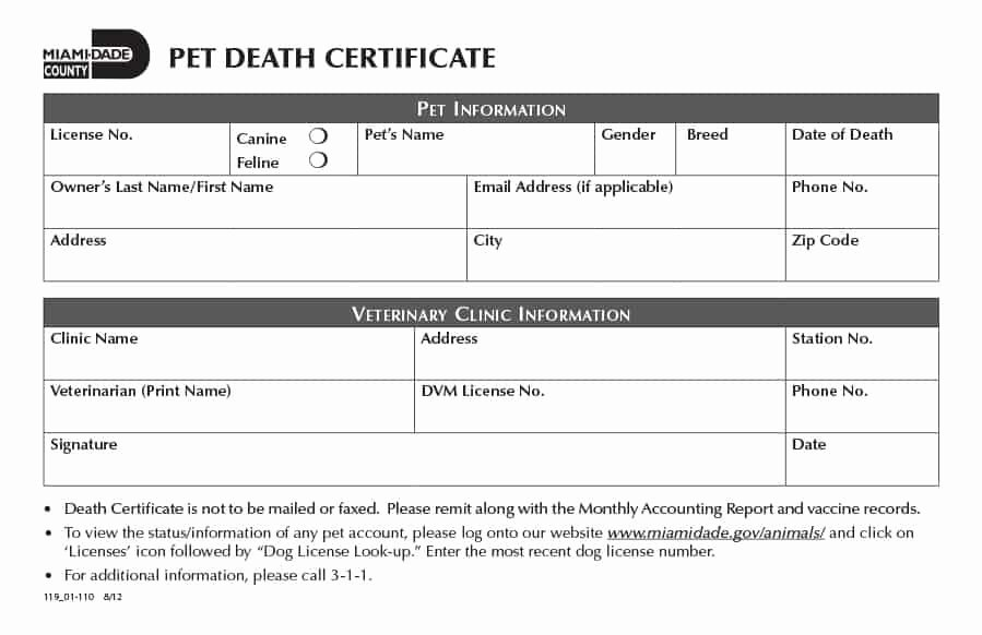 Make A Fake Death Certificate Fresh 37 Blank Death Certificate Templates [ Free]