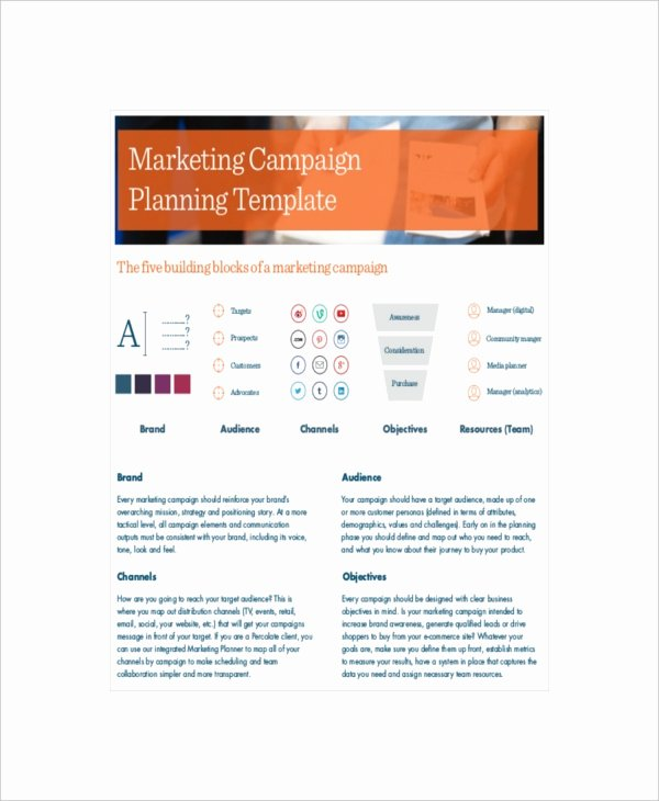 Marketing Campaign Template Awesome 13 Marketing Campaign Templates Free Sample Example