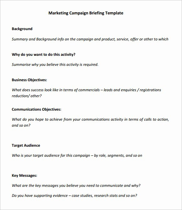 Marketing Campaign Template Best Of Sample Marketing Campaign – 8 Documents In Pdf Word