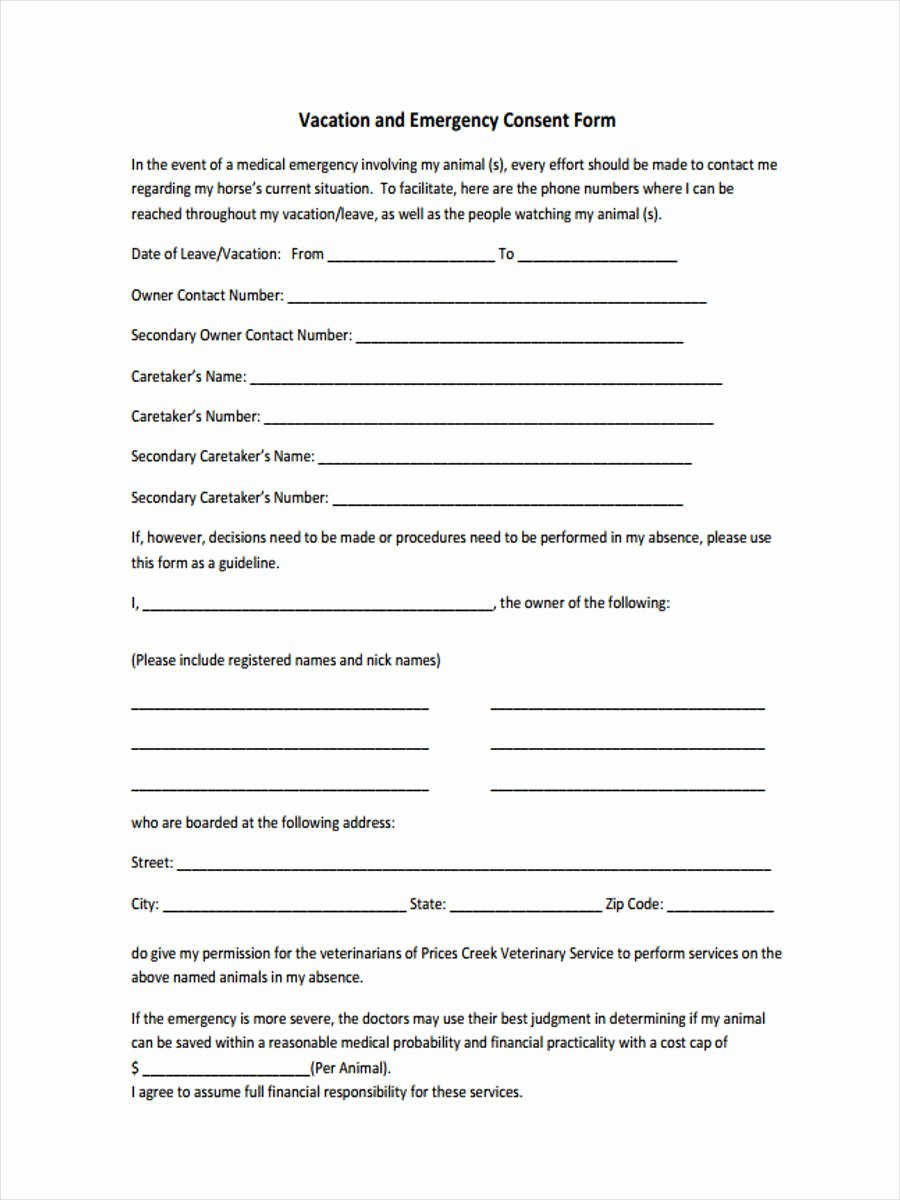 Medical Consent form for Caregiver Fresh 9 Sample Emergency Consent forms In Pdf