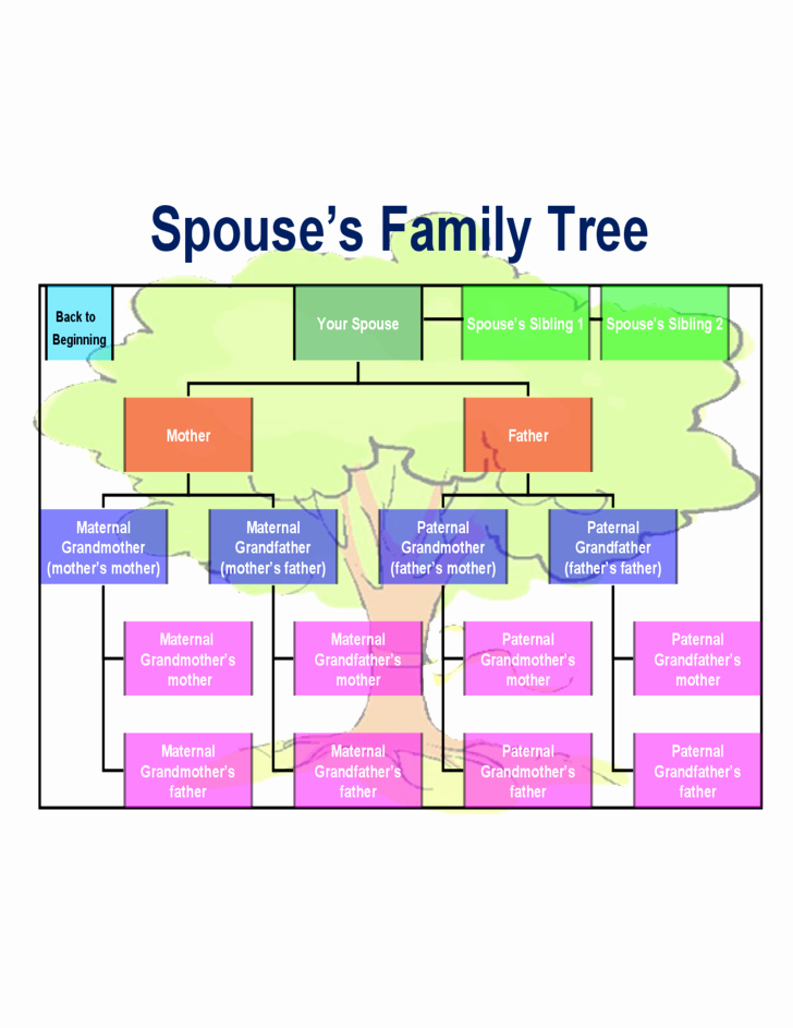 Medical Family Tree Template Awesome Best Family Tree Chart Template Free Download