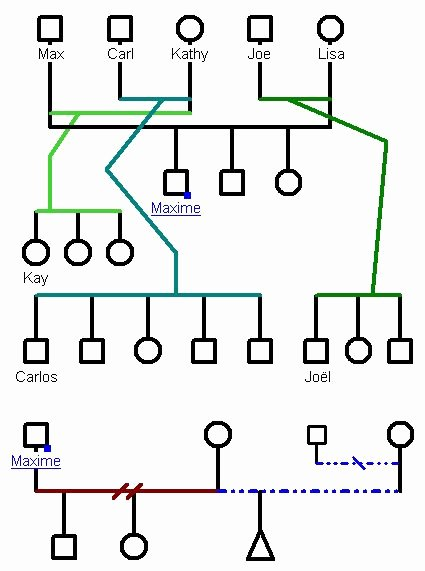 Medical Family Tree Template Best Of 67 Best Images About Genogram On Pinterest