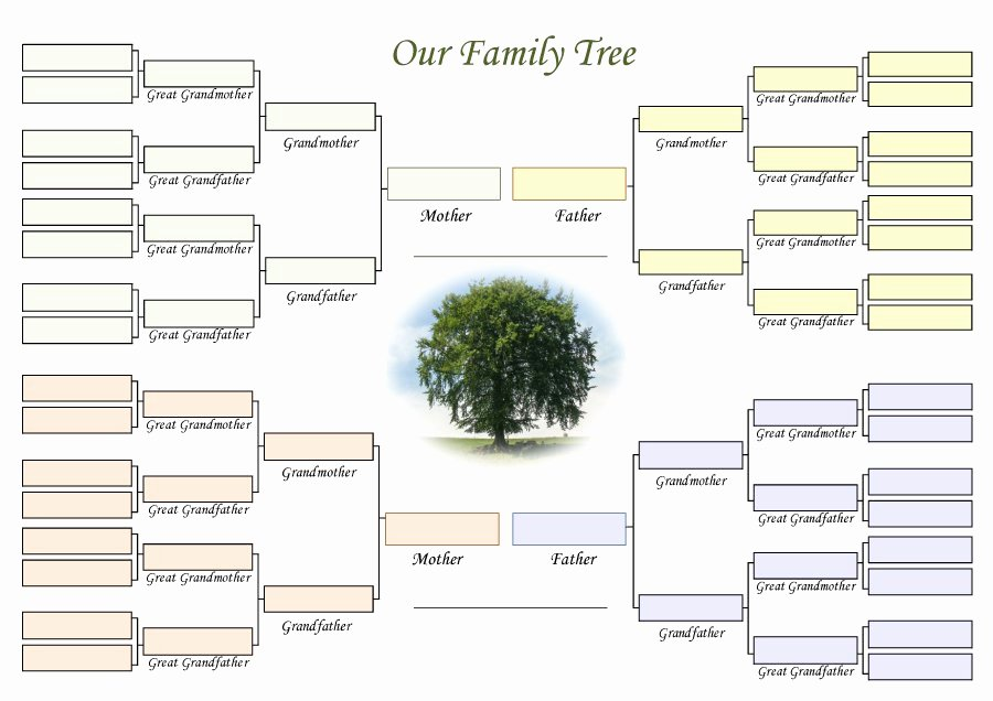 Medical Family Tree Template Inspirational 50 Free Family Tree Templates Word Excel Pdf