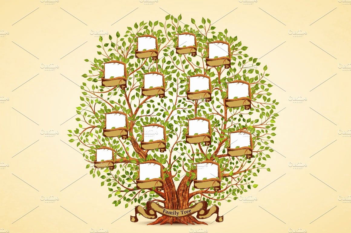 Medical Family Tree Template Luxury Family Tree Template Illustrations Creative Market