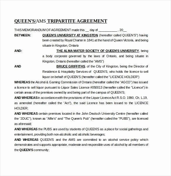 Memorandum Of Agreement Samples Luxury 13 Memorandum Of Agreement Templates – Word Pdf