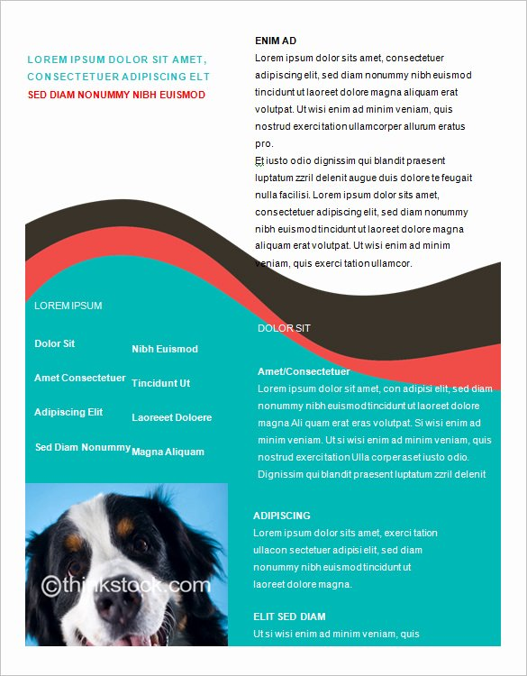 Microsoft Word Flyer Templates Free Lovely Microsoft Brochure Template 49 Free Word Pdf Ppt