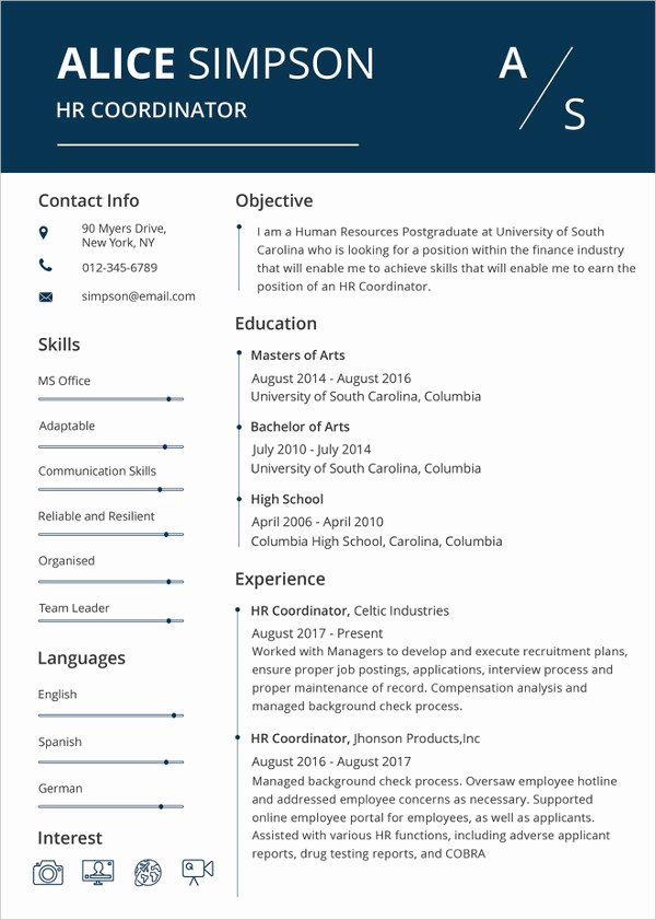 Microsoft Word Resume Example Elegant Microsoft Word Resume Template 49 Free Samples
