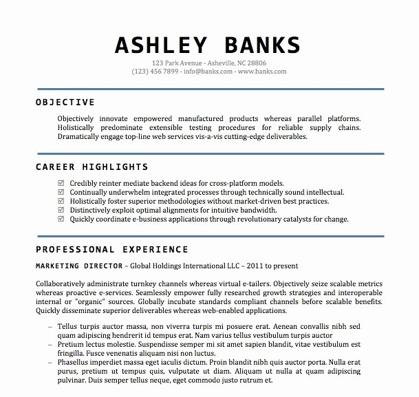 Microsoft Word Resume Example Fresh Professional Resume Templates Microsoft Word