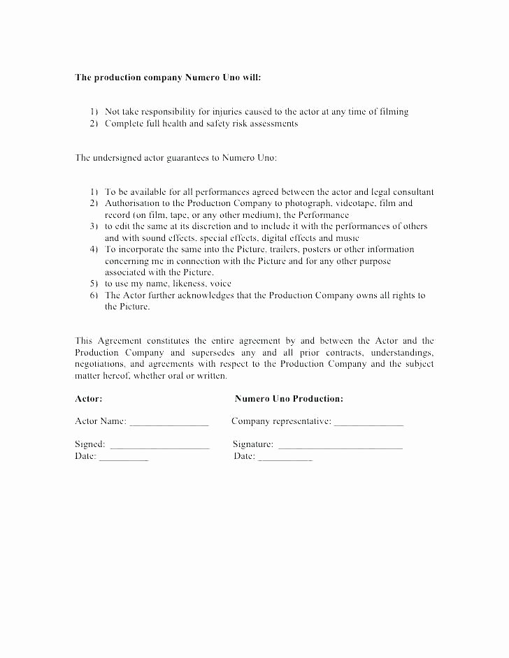 Music Production Contract Template Unique Insurance Contract Template