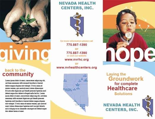 Non Profit Brochure Example Lovely Non Profit organization Brochure Examples