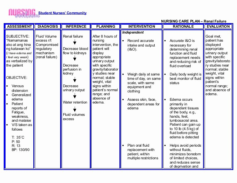 Nursing Care Plan New Nursing Crib Nursing Care Plan Renal Failure