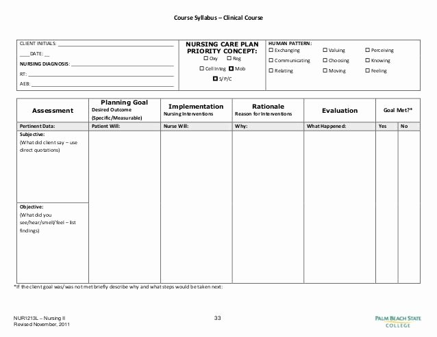 Nursing Home Care Plan Template Awesome Blank Nursing Care Plan Templates Google Search
