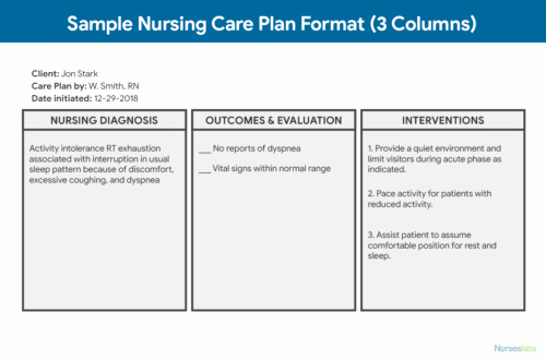 Nursing Home Care Plan Template Awesome Nursing Care Plan Ncp Ultimate Guide and Database