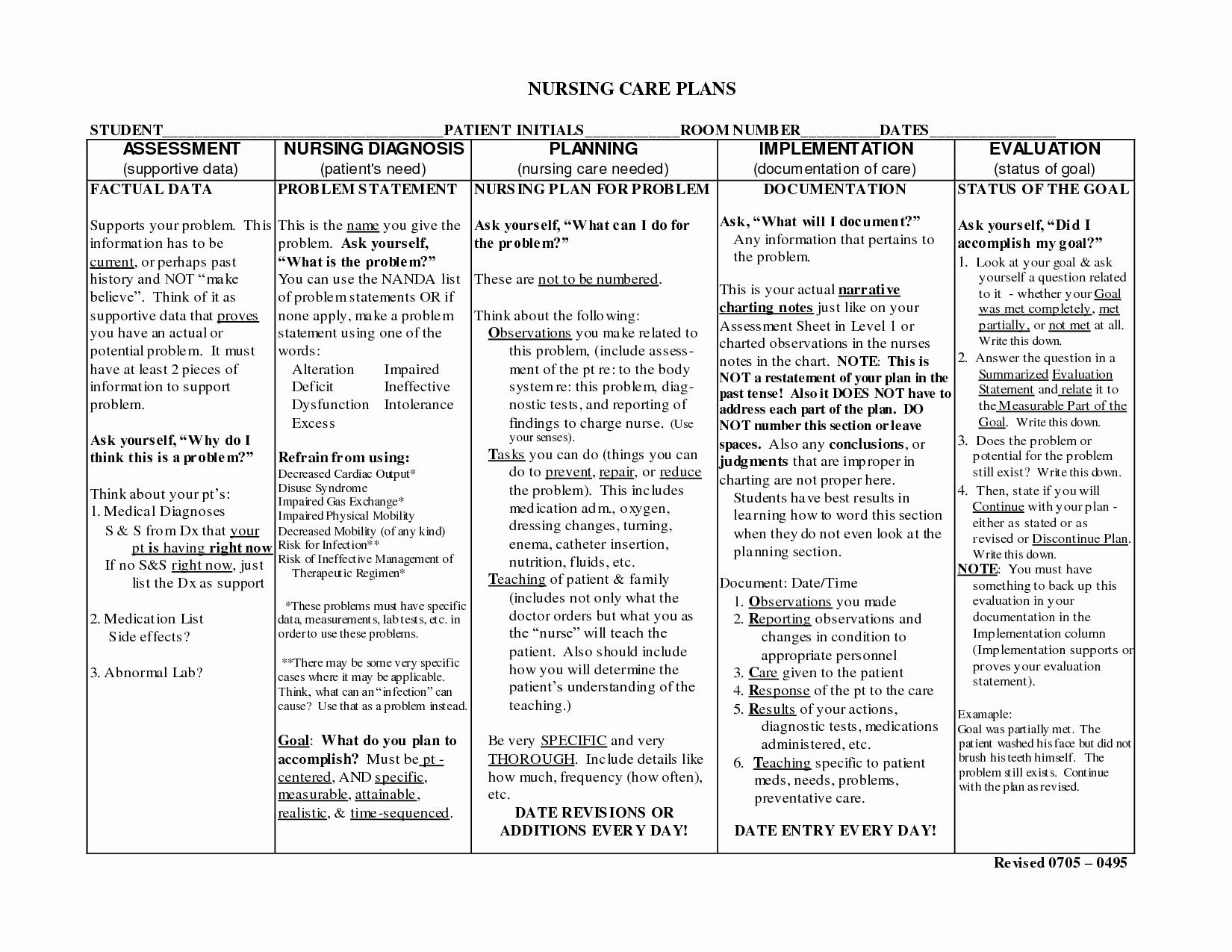 Nursing Home Care Plan Template Best Of Nursing Notes