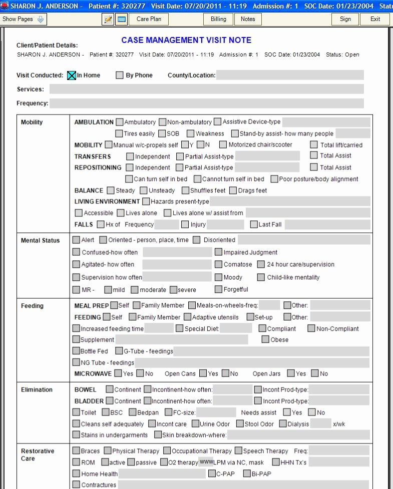 Nursing Home Care Plan Template Luxury 27 Of Nursing Clinical Documentation Template