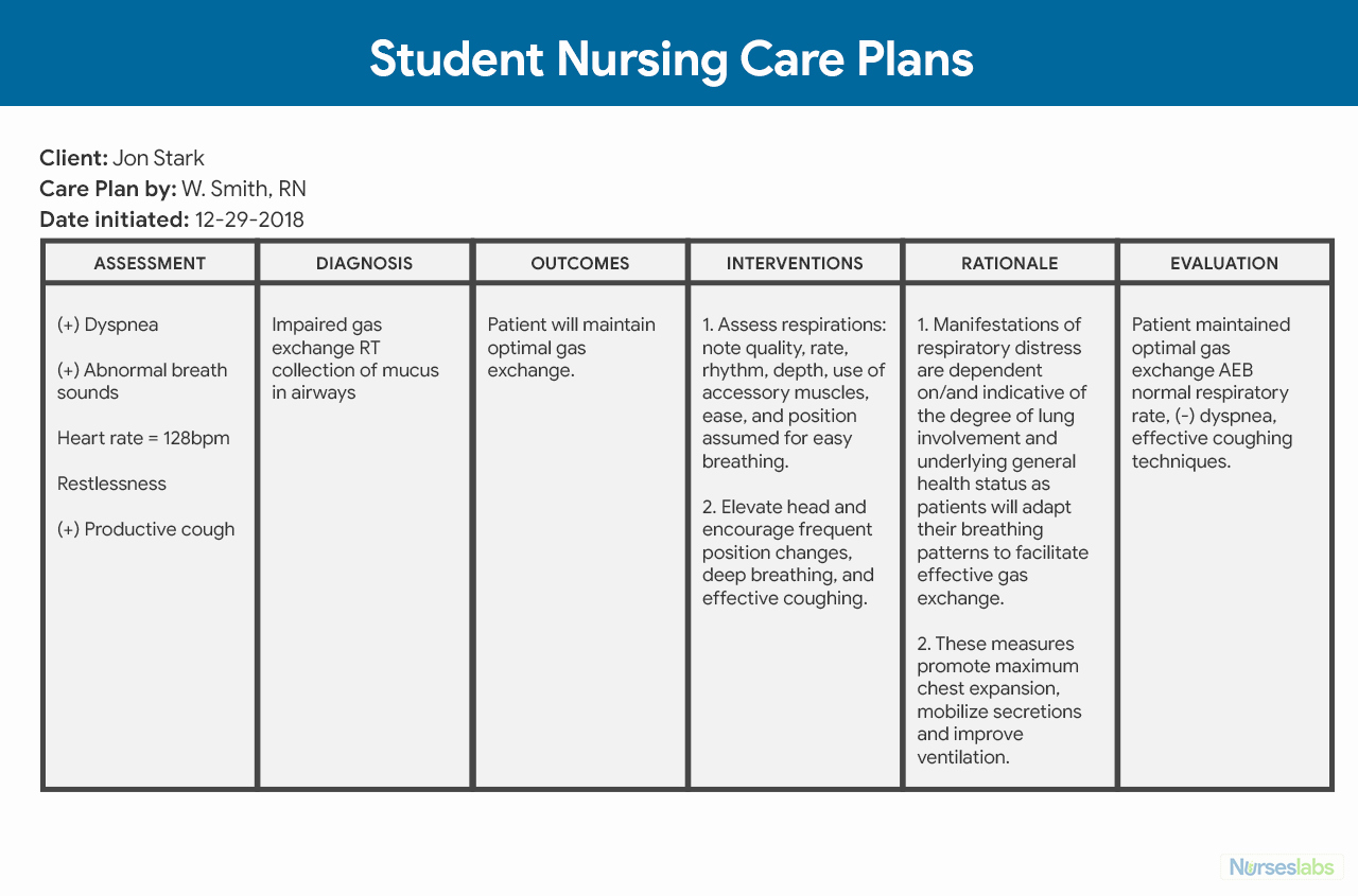 Nursing Home Care Plan Template Unique Nursing Care Plan Ncp Ultimate Guide and Database