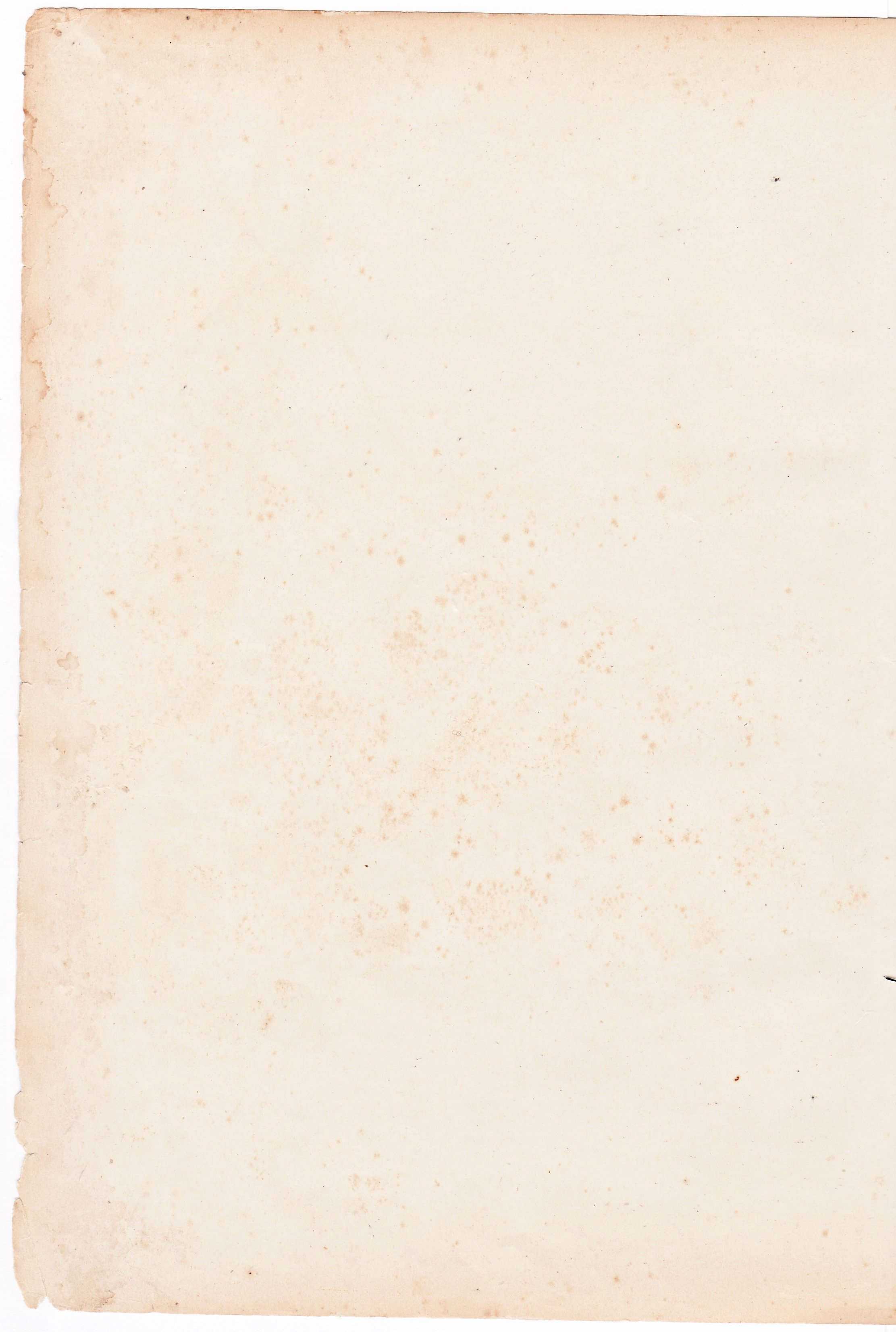 10 free high resolution paper textures