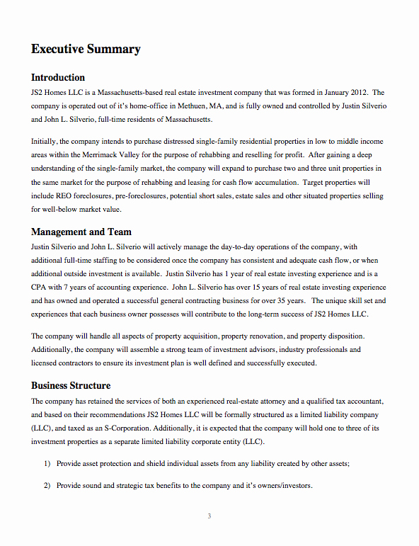 One Page Executive Summary Elegant Business Plan for Real Estate Investing