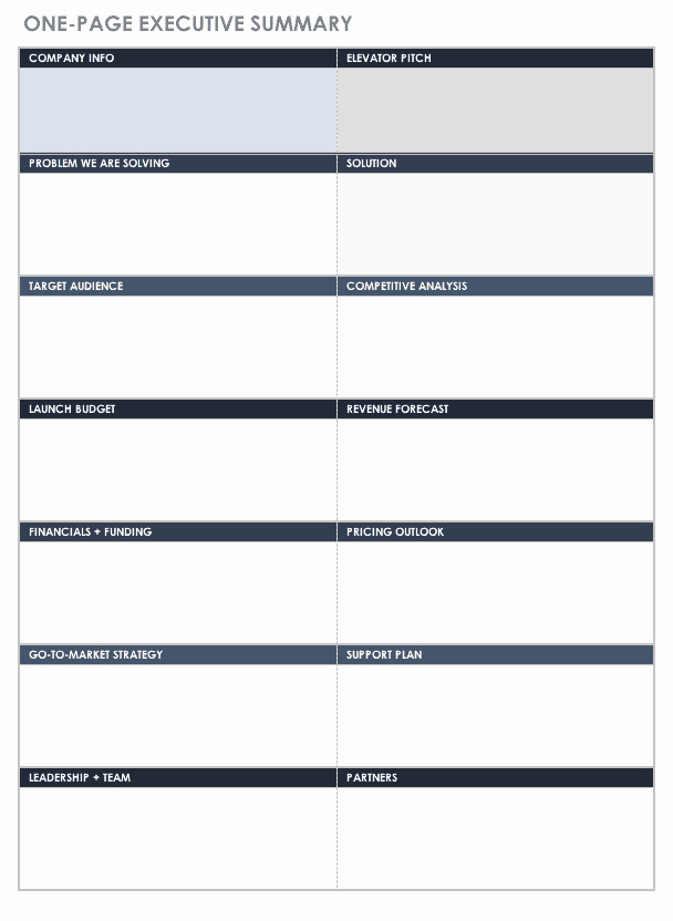 One Page Executive Summary Elegant Free Executive Summary Templates