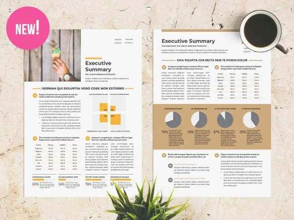 One Page Executive Summary Fresh Free Indesign Templates