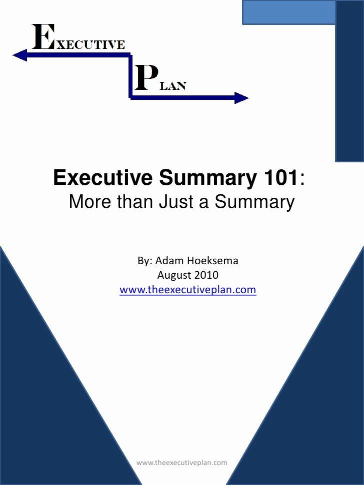 One Page Executive Summary Sample Fresh Executive Summary 101