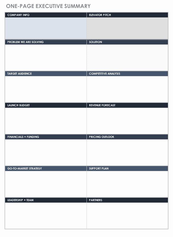 One Page Executive Summary Sample Fresh Free Executive Summary Templates