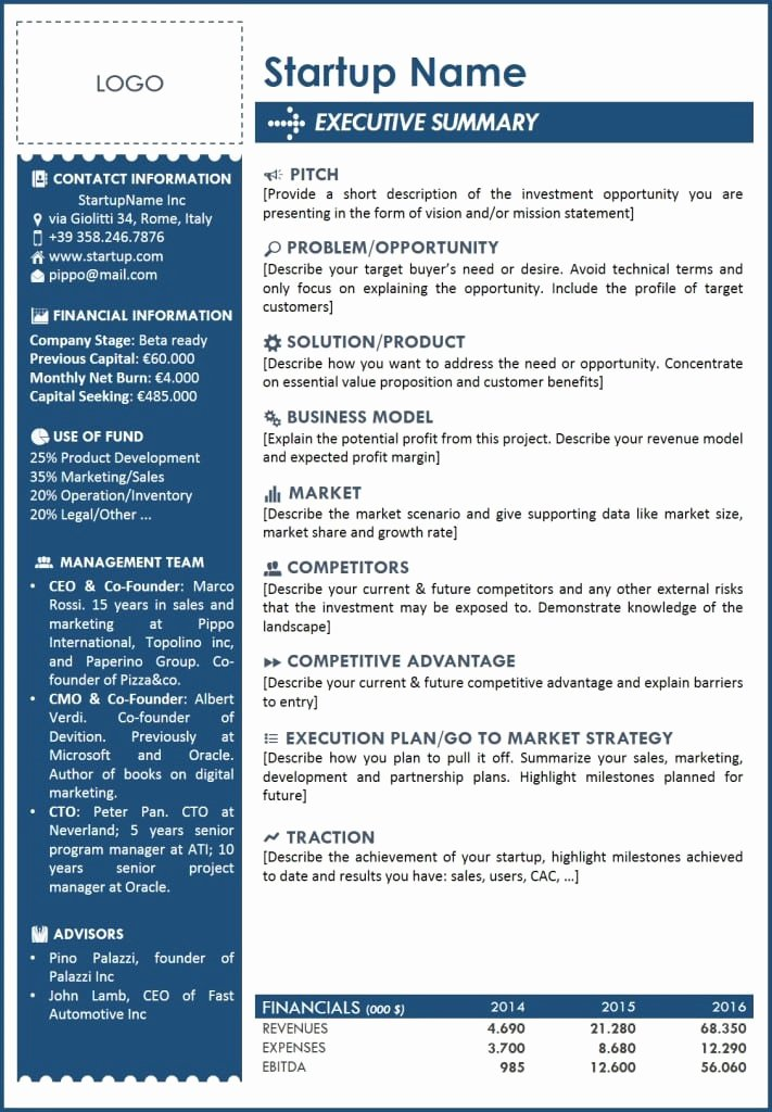 One Page Executive Summary Sample New 5 Free Executive Summary Templates Excel Pdf formats