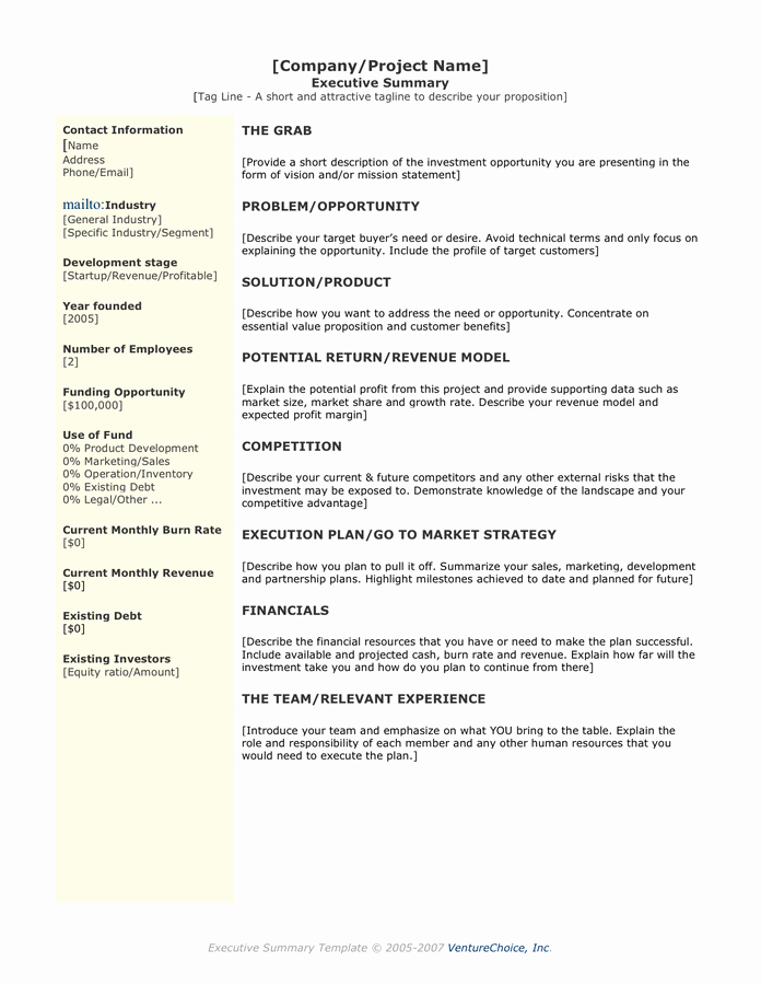 One Page Executive Summary Sample Unique Executive Summary Template In Word and Pdf formats