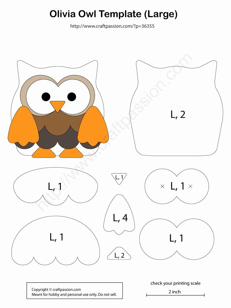 Owl Cut Out Template Beautiful Best 25 Owl Templates Ideas On Pinterest