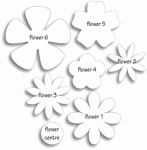 Paper Flower Pattern Printable Awesome Different Flower Patterns Maybe for Making Flower Pins