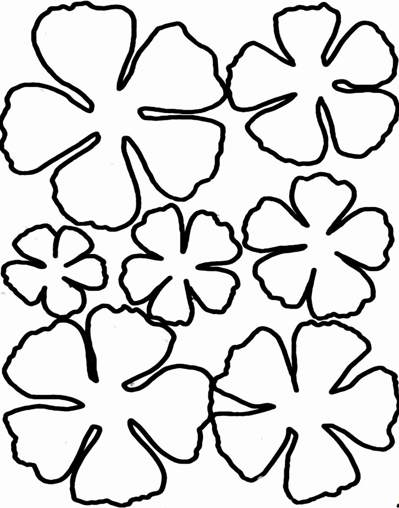 Paper Flower Pattern Printable Awesome Printable Flower Petal Template Pattern Clipart Best