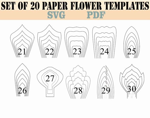 Paper Flower Pattern Printable Best Of All 20 Pdf & Svg Diy Giant Paper Flower Template