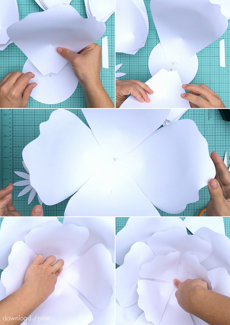 Paper Flower Petals Template Awesome How to Make Giant Paper Roses Plus A Free Petal Template