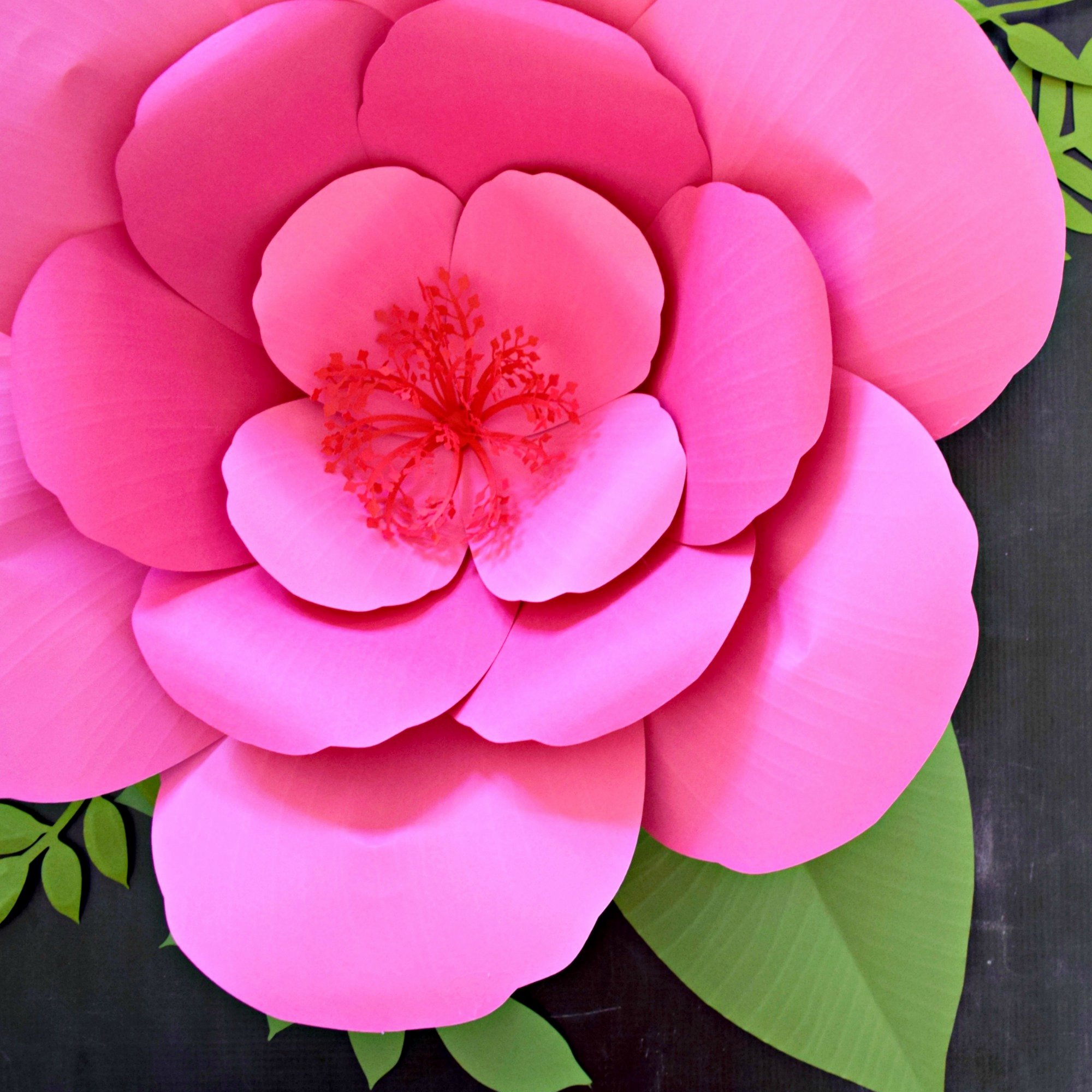 Paper Flower Templates to Print Beautiful Paper Flower Templates with Full Tutorials Printable Pdf