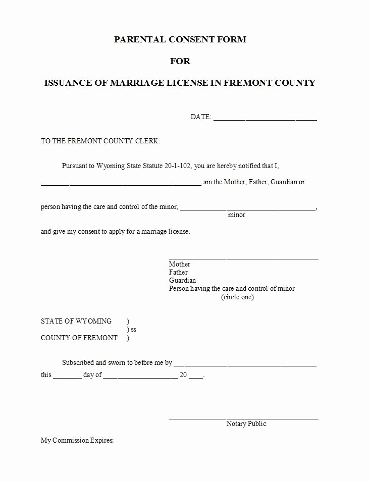 Parent Consent forms Template Unique 50 Printable Parental Consent form & Templates Template Lab